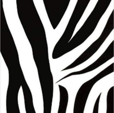 Decor| Zebra |