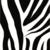 Decor| Zebra |